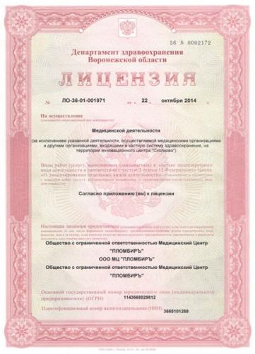 лицензия пломбиръ1